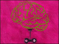 Lehrer_brain